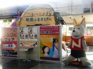 2013akita-nobu.jpg