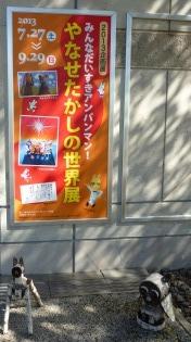 2013kurohime-6.jpg