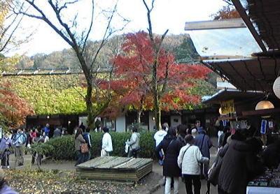 asuke2008.jpg