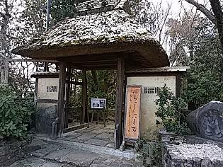 201801morinooto (2).jpg